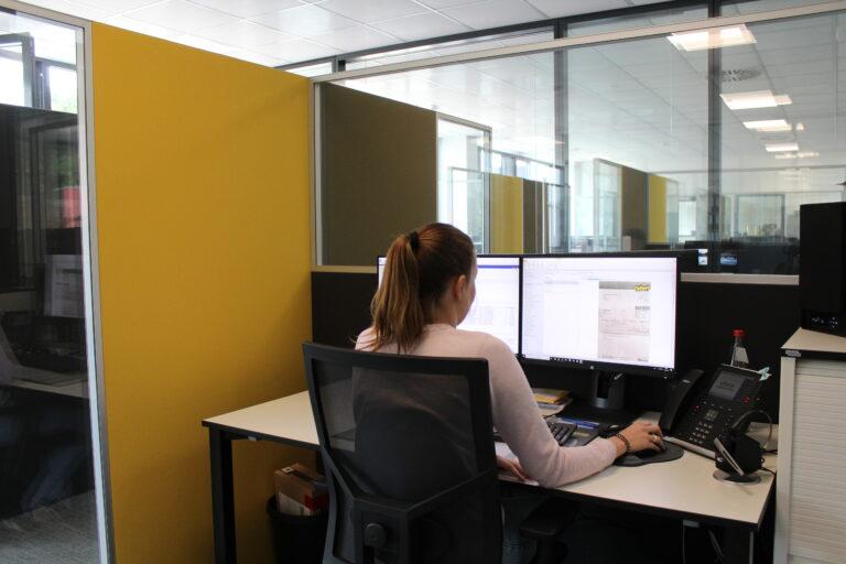 Kundenbeispiel Nubert Schwäbisch Gmünd mit Schallabsorber für das Büro