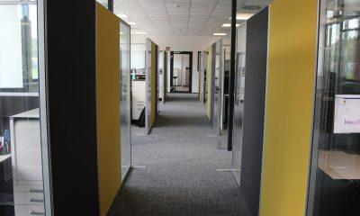 Kundenlösung Nubert Schallabsorber Büro